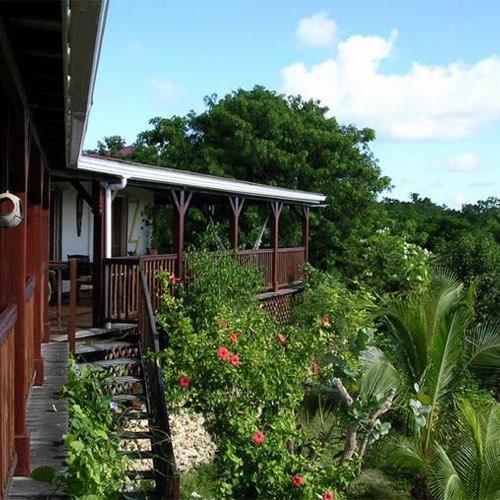 Balcons de Passiflora