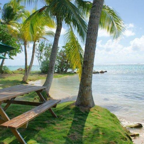 Location Vacances Marie Galante - Restaurant - Sun7Beach