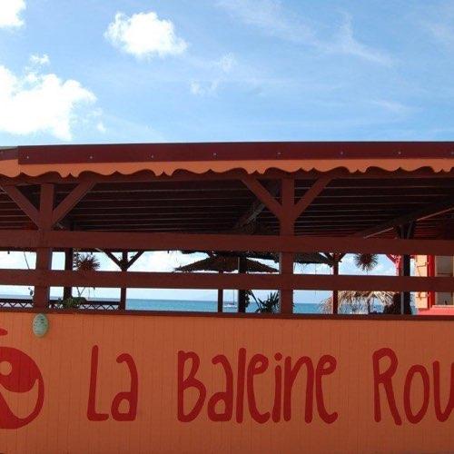MarieGalante.info - La Baleine Rouge