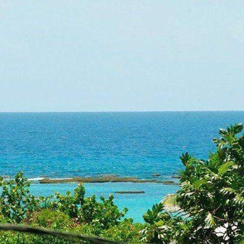 www.lagalette.net - Marie-Galante Authentique - Tropic Beauty- Location Gîtes LAMBOURDE